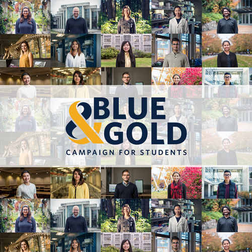 Blue and Gold Campaign for Students collage